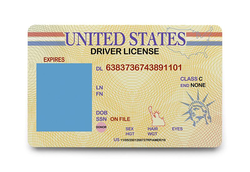 blank license